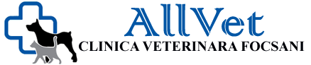 Clinica Veterinara AllVet – Focsani
